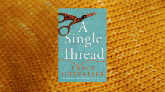 Tracy Chevalier book, A Stitch In Time